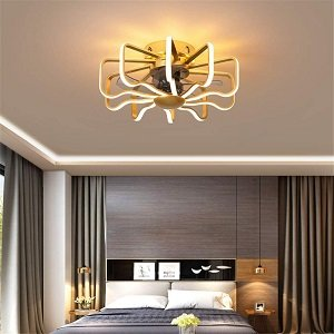 DMNSDD Enclosed Ceiling Fan with Light