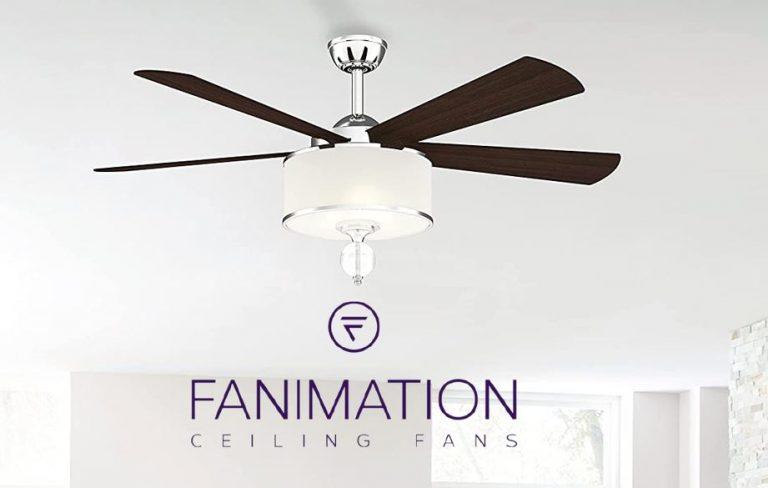 Fanimation Ceiling Fan Reviews